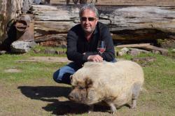 Jakob-mit-Schweinderl - Proneben Gut