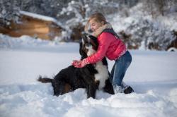 Kinderspaß mit Hund im Schnee, Kuschelhütten Chalets Österreich