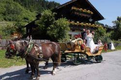 Hochzeiten am Proneben Gut