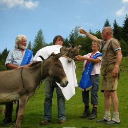 Die Eselgrauen 2006