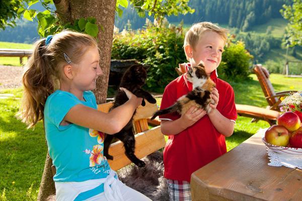 Streichelzoo mit vielen Tieren am Erlebnisbauernhof Proneben Gut