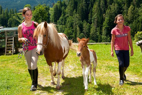 Kinderreiten mit unseren gutmütigen Pferden & Ponnys