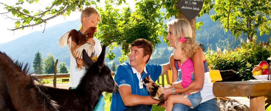 Tiere am Erlebnisbauernhof - Das Proneben Gut - ein Paradies für Tiere!
