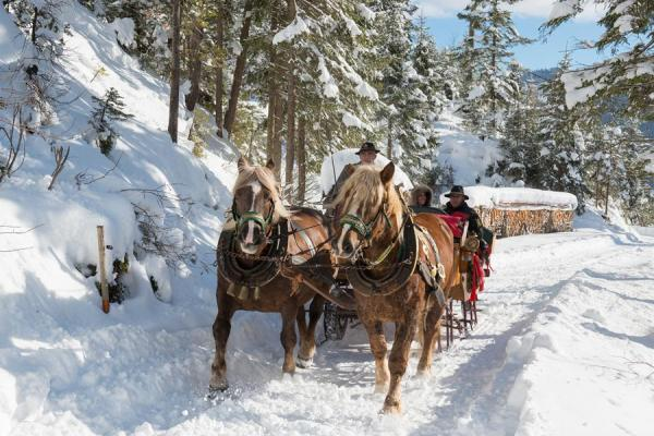 Pferdekutschenfahren im Winter am Hochkönig